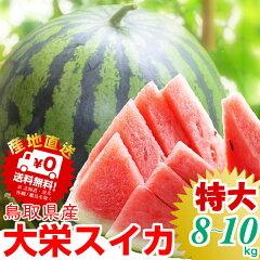日本屈指のすいかの名産地!鳥取から食べ応え満点の甘ぁ~いスイカをお届けします。すいか 鳥取...