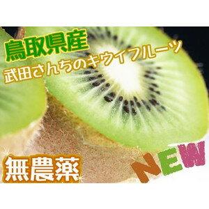 無農薬キウイフルーツ 12月上旬頃発送開始!たっぷり2kg(20個前後詰め)1配送先に付き2セ…