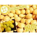 ぎんなん 銀杏 鳥取県産 新物! 某高級料亭で使用されている武田さんちの銀杏 本当に美味しいです!ぎん...