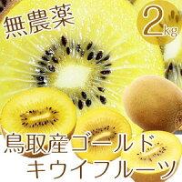 無農薬たっぷり2kg(20個前後詰め)キウイフルーツ鳥取県産有機栽培送料無料キウイ