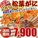 松葉ガニ(カニ 蟹 かに)2キロ 訳あり わけあり(松葉ガニ...