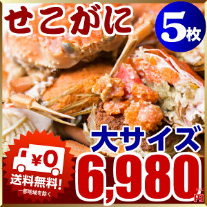 セイコ蟹 大サイズ(カニ 蟹 かに)5枚入り!セコガニ(親がに/香箱ガニ/せいこ蟹/せこがに/せこ蟹/せいこがに/松葉がにの雌)≪送料無料
