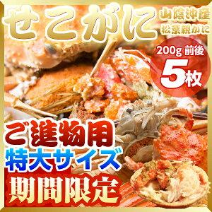 セイコ蟹 (カニ 蟹 かに)5枚入り!セコガニ(親がに/せいこ蟹/せこがに/せこ蟹/せいこがに/松葉がにの雌 1配送先につき2セット以上ご購入でもう1セットおまけ!合計15枚