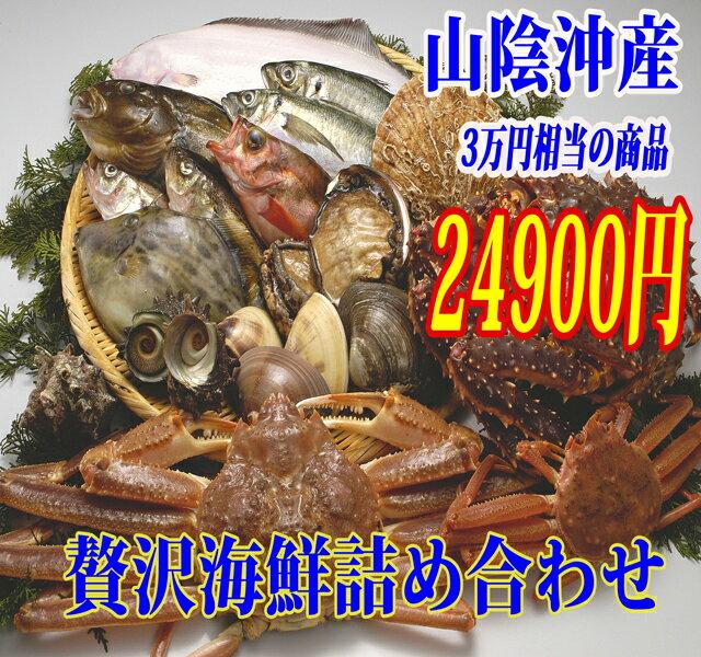 【山陰沖産】旬の朝とれ魚介類セット(貝類含む)【 産地直送の海鮮セット!≪≫