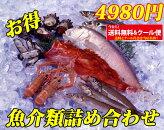 【山陰沖産】旬の朝とれ魚介類セット(貝類含む)【産地直送の海鮮セット!≪送料無料≫