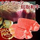 鳥取和牛オレイン55  ヒレ肉(1kg)ブロック肉鳥取和牛 【送料無料】 オレイン55 ブランド牛 最...