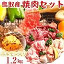 鳥取県産 焼き肉セット(ホルモン入り)1,2キロ(3〜5人前)牛肉 豚肉 鶏肉 ホルモン バーベキューセット BBQ