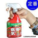 オリーブの殺虫剤 ベニカX ファインスプレー(420mL) イラガ チャドクガ 敬老の日 ポイント消化 観葉植物
