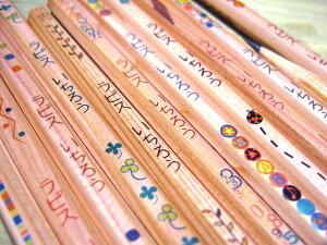 鉛筆・名前入れ無料 安心の日本製 レビュー多数の実績! 名入れ対象商品メール便送料無料・...