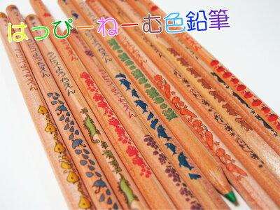メール便送料無料・色鉛筆・名入れ無料 はっぴーねーむ色鉛筆12色 かわいいオリジナルイラスト・木のぬくもり