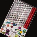 卒園・記念品用 鉛筆・名入れ無料 ギャラクシーねーむ鉛筆2B(朱色セット) かわいいオリジナルイラスト・友達に自慢!めずらしいシルバーの鉛筆!