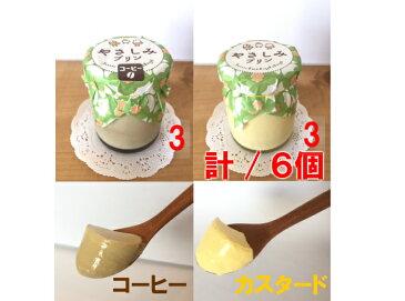 【低糖質・糖質制限】『やさしみプリン6個セット(カスタード・コーヒー)』カスタード糖質2.4g・コーヒー糖質2.6g 手づくりで濃厚な低糖質プリン