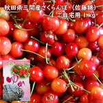 味のバランスが良い三関産さくらんぼ(佐藤錦)