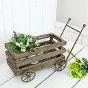 【ナチュラルガーデンに。グリーンやお花と合わせて♪】COVENT GARDEN/フラワーカートM【05P14...