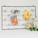 【お気に入りのカードや写真を飾って♪】EVERYDAY'S/フロレアル ウォールカードフォルダー ...