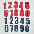 【定形郵便100円】ROUTE66ルート66ワッペン刺繍アップリケミシン手芸アメリカ国旗