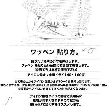 【定形郵便 100円】キングジョー ウルトラマン ワッペン アイロンパッチ 入園 入学