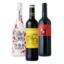 ワインジー セレクト 特別な日泡 赤ワイン イタリア スペイン