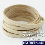 タンローレース5.0mm巾