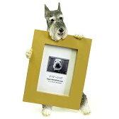 ピクチャーフレーム mini シュナウザー1 (from USA)(フォトフレーム フォトスタンド 犬グッズ 写真立て 写真たて 記念品 輸入雑貨 出産祝い 犬雑貨 通販 楽天)