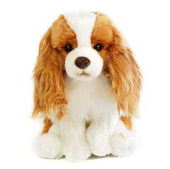 キャバリア(ブレンハイム)のぬいぐるみ ひっつぅ〜くん大♪犬のぬいぐるみ イギリス生まれの犬グッズ[バルーン&アニマル雑貨 Le Chien]