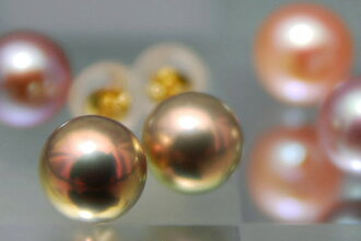 attracted only stopping 7 mm freshwater pearls K18YG piercing てりてり finest in vivid colors reappear!