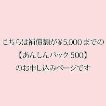 あんしんパック500