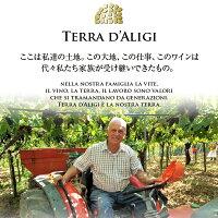 【よりどり3本以上送料無料】 赤ワイン テッラ ダリージ モンテプルチアーノ ダブルッツォ DOC 2017 750ml イタリア