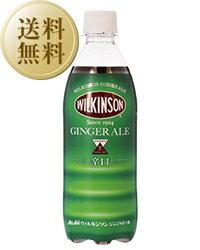 【送料無料】 ウィルキンソン ジンジャーエール ペットボトル 500ml 2ケース(24本入り×2) 他商品と同梱不可