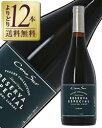【よりどり12本送料無料】 【アウトレット商品:ラベル、キャップ、ビン傷あり】コノスル シラー レゼルバ 2015 750ml 赤ワイン