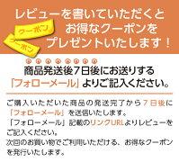 【包装不可】ディチェコディチェコNo.11スパゲティーニ1ケース(500g×24入り)デチェコDeCecco