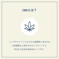 CBDバスボム入浴剤CBD100mgCBDLIVING(CBDリビング)コスメ乾燥冬化粧品美容リラックス大麻