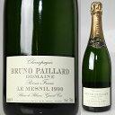 パイヤール グレートヴィンテージ1990年正規品在庫限りブルーノ・パイヤール・ル・メニル・ブラ...