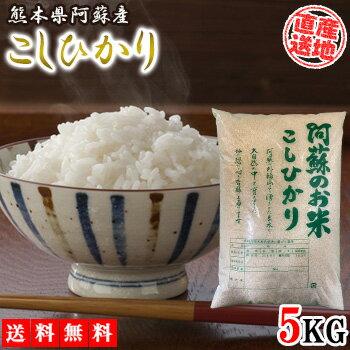 米 コシヒカリ こしひかり 5kg 送料無料 令和2年産 お米 白米 ブランド米 精米 こめ コメ 阿蘇産 熊本県産