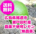 無農薬レモン 2kg 10-20個 広島県尾道市瀬戸田町高根島産 【無...
