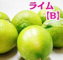 【わけあり】広島県尾道市瀬戸田町産 ライム 2kg 防腐剤・防かび剤不使用 【ノーワックス】