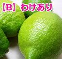 【グリーンレモン】【わけあり】広島県尾道市瀬...