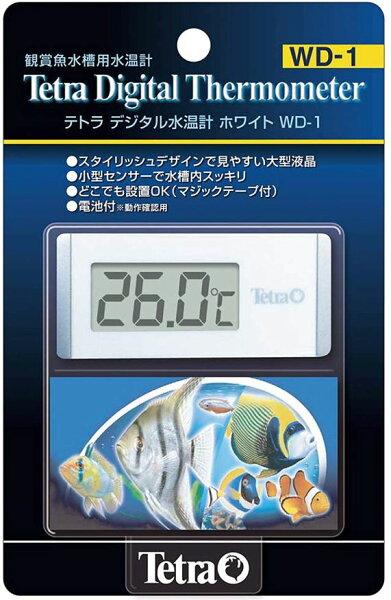 テトラデジタル水温計ホワイトWD-1250円 ピクシーシュリンプおすすめ 熱帯魚エビ  シュリンプセット・飼育セット・アクアリウ