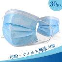 【在庫あり】 マスク 10枚×3袋 30枚 三層構造 使い捨て 男女兼用 レギュラーサイズ 3層保護...