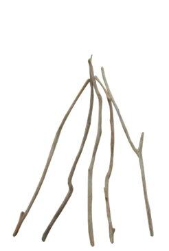 細枝流木の5本セット e322 DIYガーデニング園芸工作用インテリア店舗ディスプレイや撮影用に 、そのまま使えるきれいに処理された流木枝素材 【送料無料】