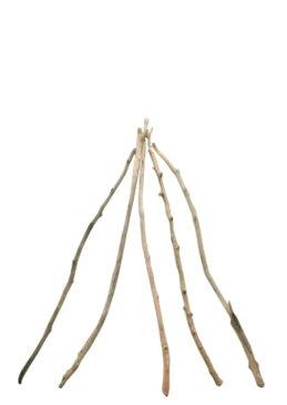 大枝流木5本セット f218 DIYガーデニング園芸工作用インテリア店舗ディスプレイや撮影用に 、そのまま使えるきれいに処理された流木枝素材 【送料無料】