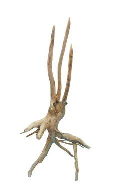 大型根付株立ち幹流木 [g154] DIYガーデニング園芸工作用インテリア店舗ディスプレイや撮影用に 、そのまま使えるきれいに処理された流木幹根素材 【送料無料】