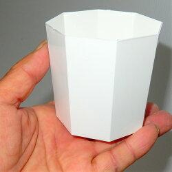 オシャレな8角シンプル鉢