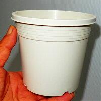 4号シンプルプラスチック鉢