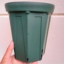 シンプル形状深みのある緑スリット鉢