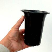 黒ロング鉢
