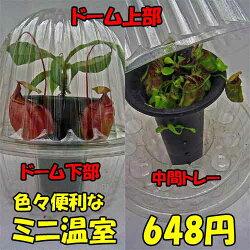 【ミニ温室】【フラワーキャップ】観葉植物食虫植物などの保温、湿度保持に10P30Nov14
