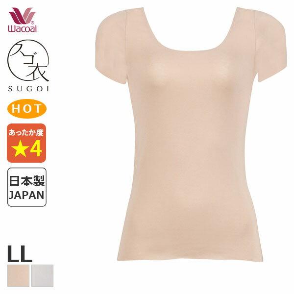 インナー・下着, インナーシャツ B25OFF U (LL2)CLC260 mb