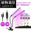 植物育成用 LEDライト フレキシブルアーム ランプ 室内用 プラント クリップ式 赤青LED...