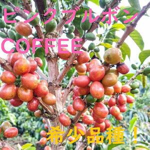 焙煎人珈琲豆也のピンクブルボンコーヒー豆100グラム(豆のまま)